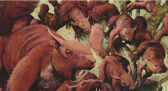 Image for Against the Odds: Squirrels