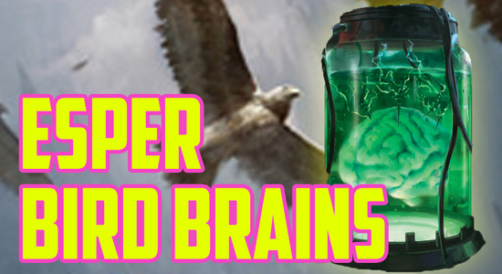 Esper bird brains