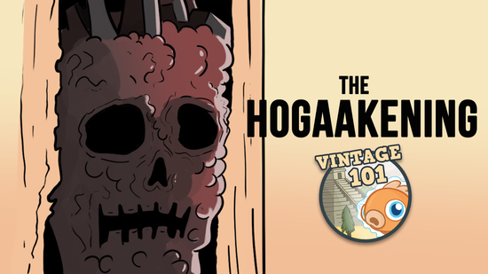 Image for Vintage 101: The Hogaakening