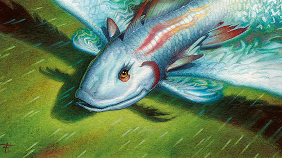 preview image for The Fish Tank: Sweet and Spicy User-Submitted Decks (Nov. 10-16, 2019)